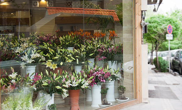 Houshang Flower shop