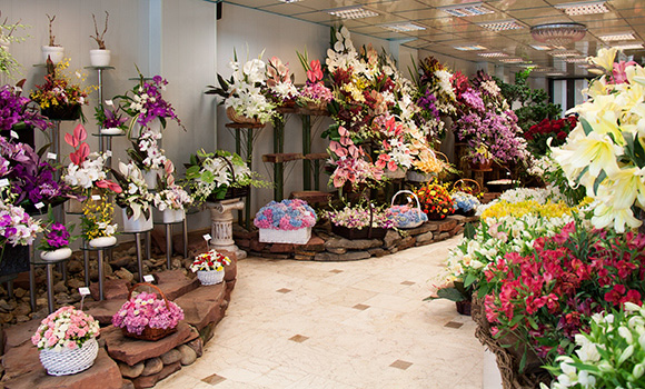 Pouzhan Flower shop