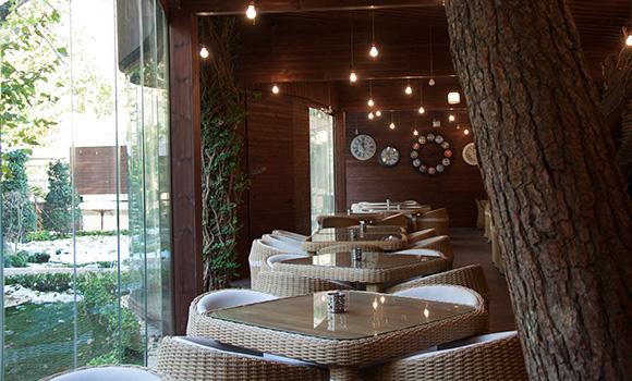 Maya Café
