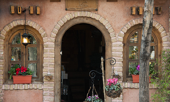 Govinda Café Store