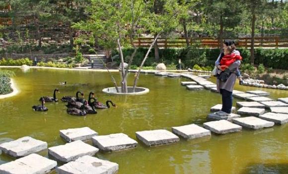 Tehran's Bird Garden