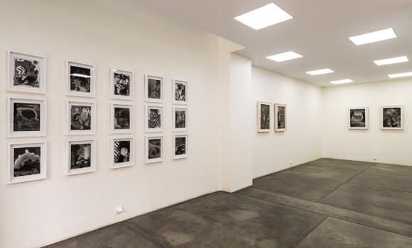 O Gallery