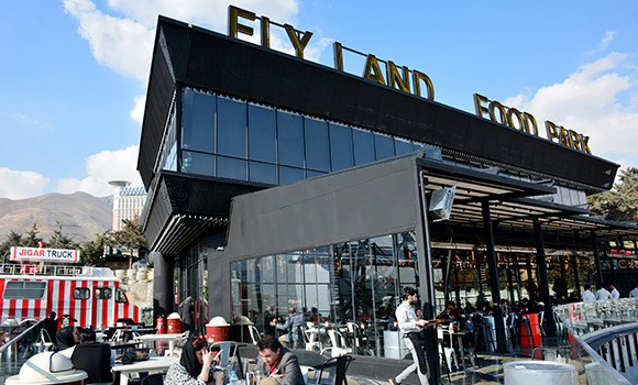 Fly Land